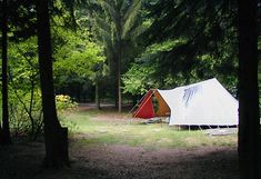 Natuurcamping - Landgoed Quadenoord 100 Euro, Outdoor Gear, Tent, Places To Go, Camping, Campsite, Store, Tents, Campers