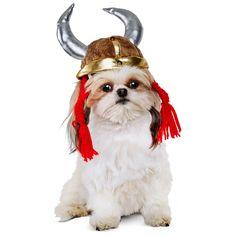 Petco Halloween Viking Helmet Dog Costume