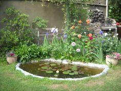 Consejos para tener plantas acuáticas - http://www.jardineriaon.com/consejos-para-tener-plantas-acuaticas.html