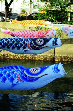 Japanese Carp Streamers, Koinobori by Meg Foto Japão