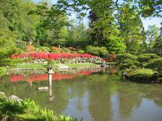 Japanese Gardens in the Arboretum #seattle