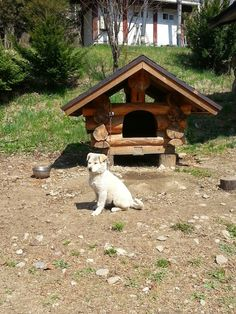 Jeff and Korea Log house: Doghouses made of log in Korea Log School
