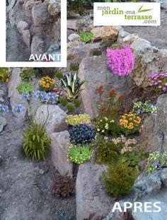 Jardin de rocaille avec des pierres naturelles fleurs - Faire une rocaille dans son jardin ...