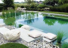 экологический бассейн