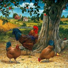 Chickens and roosters for decoupage. Discussion on LiveInternet - Russian Service Online Diaries Rooster Painting, Rooster Art, Red Rooster, Chicken Painting, Chicken Art, Farm Animals, Animals And Pets, Arte Do Galo, Photo Humour