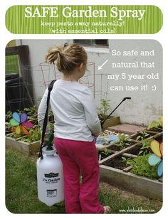 Natural Garden Spray with peppermint oil - A Bird and a Bean