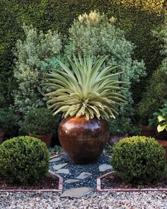 For a dramatic gesture, place a substantial container in an area you want to… Container Gardening Vegetables, Container Plants, Succulent Containers, Container Flowers, Vegetable Gardening, Garden Spaces, Garden Pots, Vertical Garden Wall, Decorated Flower Pots