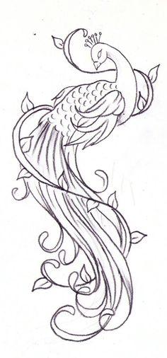 peacock sketch, inspiration