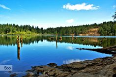 This original photograph features a clear shot of the calm waters of Westwood Lake on a sunny summer day. Westwood Lake is located in Nanaimo om Vancouver Island BC Canada.