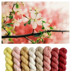 Color inspiration for baby blanket Dyeing Yarn, Color Inspiration, Crochet Hooks, Blanket, Mini, Baby, Crochet, Blankets, Baby Humor