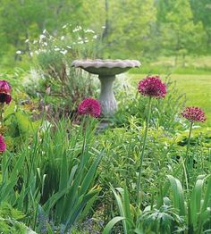 Birdbath Basic: Keep it Shallow  Select a rough-surface basin such as one made of concrete or stone that gradually becomes deeper (to 3 inches) and allows birds sure footing as they wade. Improve the traction of a smooth-surface birdbath by placing gravel in it