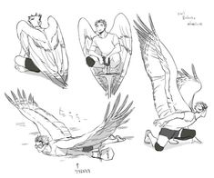A pedido de uma pessoa aqui da comunidade venho trazer estes exemplos de asas espero inspirar algum