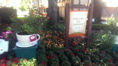 [Photo] Twinings Tea Garden at EPCOT Garden Festival #tea #greentea #teatime #win #90sBabyFollowTrain