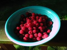 Raspberries from the back yard from another year--they're on their way now.