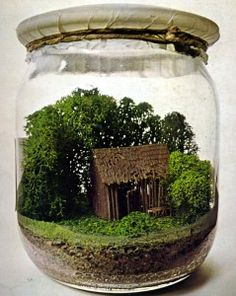 Miniature environment in a jar