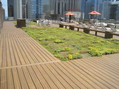 We're loving this rooftop oasis in the middle of Chicago! This outdoor space was built by one of our TrexPro Platinum contractors, Unique Deck Builders, and features Trex Transcend decking in Havana Gold. Find a TrexPro in your area who can build your dream deck at http://www.trex.com/find-a-contractor/. #contractorproject #outdoorliving #deck #patio #porch #backyard