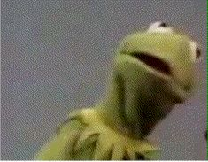 annoyed frustrated kermit kermit the frog resting bitch face