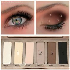 how to apply eye shadow: