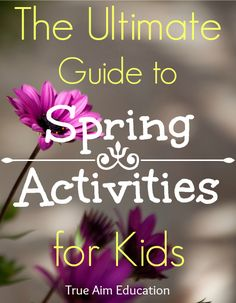 The Ultimate Guide to Spring Activities for Kids via True Aim Education