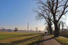 Heute waren mein Mann und ich wie in jedem Jahr am Neujahrstag am Rhein und haben dort die Asche unserer verbrannten Zettelchen, die wir in unseren Schälchen aufbewahrt hatten, hinein gestreut. Der…