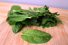 How to Preserve Mint Leaves Good to know since I have mint upon mint upon mint in my garden...