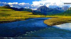Yellowstone National Park - Bing Bilder