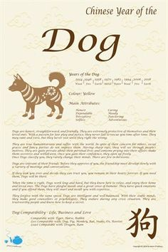 Chinese Zodiac: Chinese Zodiac Year of the Dog, $9.00 from MagCloud