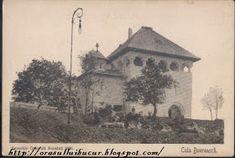 Orasul lui Bucur: Expozitia din 1906 Mecca, Dan, Painting, Painting Art, Paintings, Paint, Draw