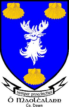 #ClosetSkellies  Mulholland coat of arms, Mulholland family crest, Mulholland heraldry, Mulholland family history