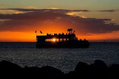 Sunset Cruise from Clearwater provided by The Tropics Boat Tours Clearwater Florida, Florida Beaches, Sarasota Florida, Mexico Weather, Dolphin Encounters, Dolphin Tours, Sanibel Island, Boat Tours, Beach Trip