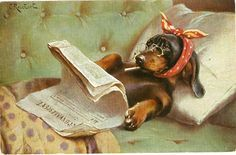 """Dachshund Dog Reads the Paper,"" 1918 -- by Carl Reichert (1836--1918, Austrian)"