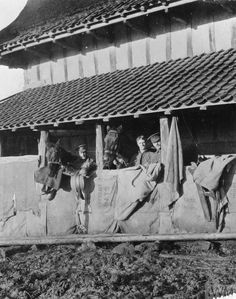 Stabling for horses of 'C' Squadron, The Queen's Bays, in a French farm during 1914.