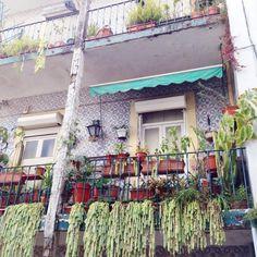 6 Show-Stopping Balcony Garden Ideas - On Craftsy Hanging Succulents on a Balcony Garden Hanging Plants Outdoor, Diy Hanging Planter, Hanging Succulents, Succulent Planters, Balcony Planters, Railing Planters, Porch Planter, Porch Garden, Balcony Garden