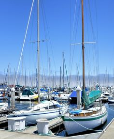 boats in harbor #FunStayAtHyattRegencyMonterey