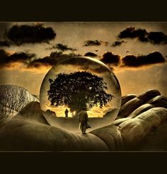 Lucid Dreaming Techniques | lucid dreaming flickr 4257138221 2bd609efc4 o metalifestream lucid ...