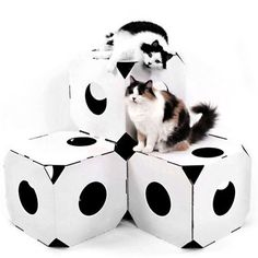 Fab.com | Modernly Modular Cat Boxes- This is a good idea, I could make these out of old boxes!