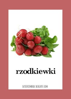 Dzieckiem bądź: Owoce i warzywa - plansze do pobrania Fruits And Vegetables, Polish Language, Pools, Origami, Anna, Therapy, Speech Language Therapy, Fruits And Veggies, Origami Paper