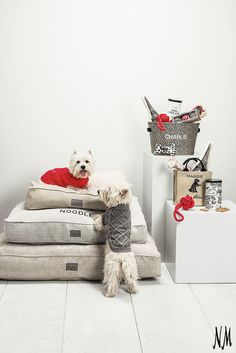 For the pups that didn't make the Puppy Bowl XI starting lineup: A Personalized Parisian Gift Set by Harry Barker. Pair with a tweed dog bed and knit sweater to spoil your pooch.