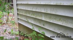 The mildew and algae on this vinyl siding can be removed quickly with a solution of oxygen bleach. Photo Credit: Tim Carter