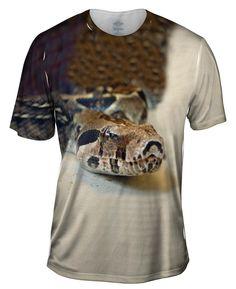 Python Slithering Snake