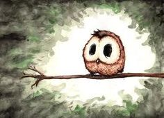 He's an adorable owl. What's not to like?