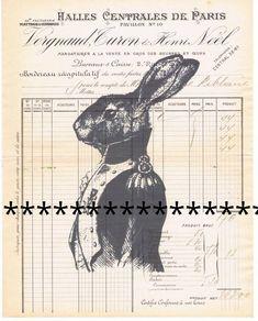 Rabbit.Bunny.Bunnie.Anthropomorphic.Antique.Vintage Paper.Original.Repurpose.Pretty Picture.Calligraphy.Home deco.Gift.Christmas.eco.child