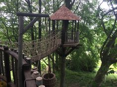 elevated tree house | Tree houses Pictures |Trehouse Specialists | High Life Treehouses