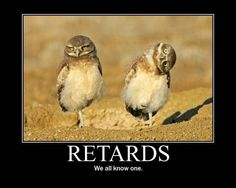 You bunch of retards!