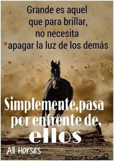 179 Mejores Imagenes De Frases Vaqueras Horses Quotations Y