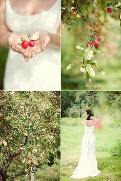 Apple Love by loretoidas, via Flickr