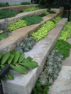 Ozeleněné schody. V našich podmínkách se dá výborně použít například mateřídouška (Thymus).