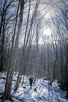 Randonnée d'hiver au Mont Sutton - Sardines et Maillet