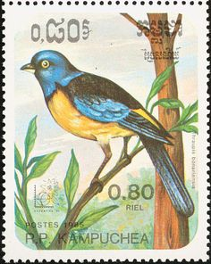 Blue-and-yellow Tanager stamps - mainly images - gallery format