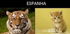 Mundo - MSF : Como foi a Espanha na copa do mundo de 2014
